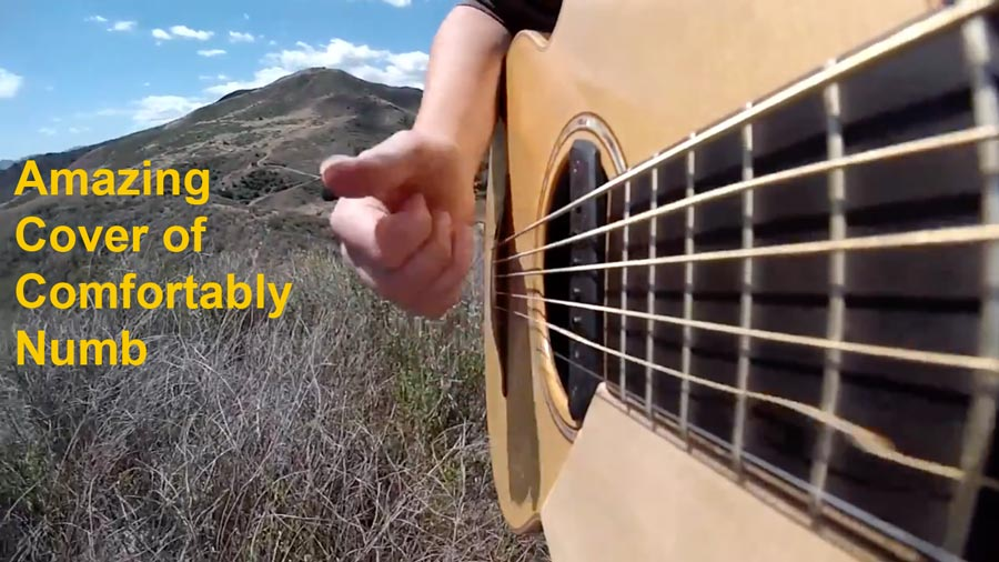 Amazing  Acoustic Cover Solo of  Pink Floyd's Comfortably Numb