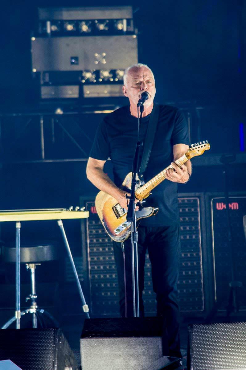 Gilmour-at-pompeii 63