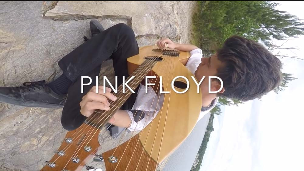"""Pink Floyd's Comfortably Numb """"Harp Cover"""" Amazing!"""